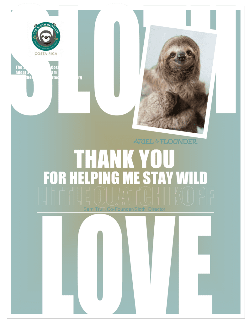 Adopt a Sloth certificate of Auriel